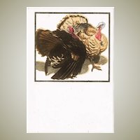 Art Deco Postcard by Bresslern Roth: Turkeys