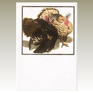 Art Deco Postcard by Bresslern Roth: Turkeys