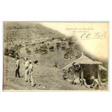 Old Postcard depicting People digging for Gold