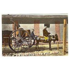 1919: Vintage Postcard: Means of Transport in Central Asia.