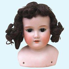 Pretty Armand Marseille Floradora Shoulder Head