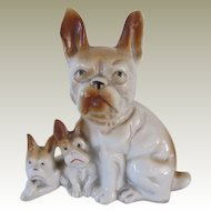 Vintage French Bulldog Mother With Puppies