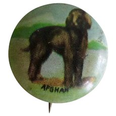 Vintage Pinback of Afghan Dog
