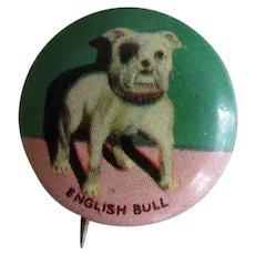 Vintage Pinback English Bulldog