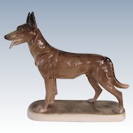 Vintage Hertwig Germany Belgian Malinois Shepherd Dog