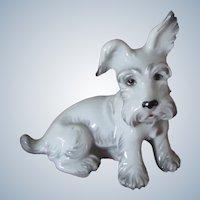 Vintage Augarten Porcelain Scotty Dog Rare