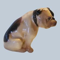 Handsome K1 Royal Doulton English Bulldog Dog Vintage