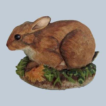 Vintage Border Fine Arts Rabbit Signed Ayres