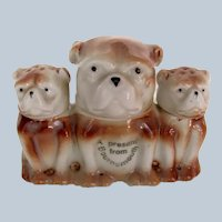 Vintage Condiment/Mustard Set Of Figural Bulldogs/Pug Dogs