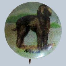 Vintage Pinback of Afghan Dog