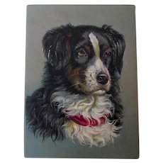Large Embossed Antique Trade Card Bernese Mountain Dog Victorian
