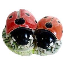 Pair Vintage Pottery Ladybugs Beetles Signed