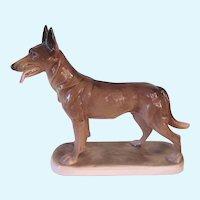 Vintage Hertwig Germany Belgian Malinois Shepherd Dog
