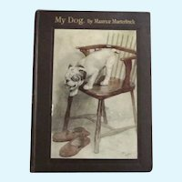 English Bulldog Story C. 1908 My Dog Illust. Cecil Alden Rare Antique