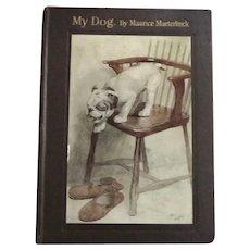 English Bulldog Story C. 1908 My Dog Illust. Cecil Alden Rare Antique