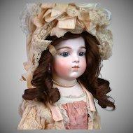 Lush Dark Chocolate Colored Original Jumeau Wig~ Hand Tied Human Hair~ Original Set & Ribbon!