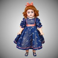 "Ginger Handwerck 79 Antique Bisque Child 14.5"" in Presentation Spring Costume"