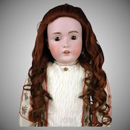 "Beautiful Brunette Human Hair Wig for Antique & Vintage Dolls 30-40"""