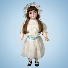 "Handwerck 99 Antique Bisque Girl 26.5"" in Lovely Long Wig"
