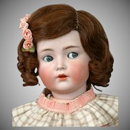 "Antique Size 12 HAND-TIED, Side-Parted Brunette Human Hair Wig for Antique French or German Dolls 19-24"" in size"