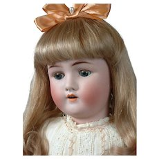 "Alt Beck & Gottschalk 23"" Antique Bisque Doll with Human Hair Wig"