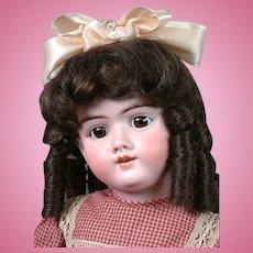"Handwerck 99 Antique Bisque Doll 26"" in Cute Plaid Dress"
