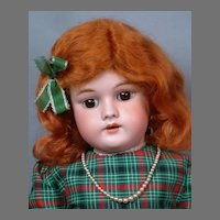 """Handwerck 99 Antique Bisque 22"""" Doll in Red and Green Plaid Dress"""