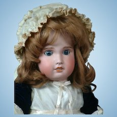 "French Jumeau SFBJ 31"" Antique Bisque Doll in Velvet Blue Dress"
