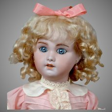 "Adorable 17"" SFBJ 230 in Sweet Pink Dress"