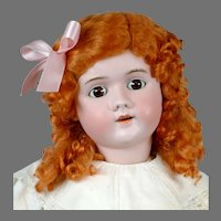 """Darling 30"""" Handwerck 109 in Antique White and Pink"""