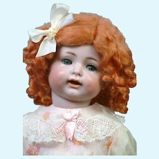 """19"""" Kammer & Reinhardt 122 Toddler in Printed Pink Dress"""