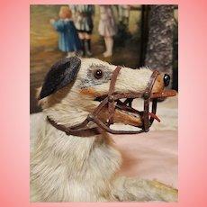~~~ Rare French Doll Dog Muzzle .... circa 1880 ~~~