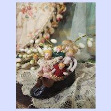 ~~~ Lovely Tiny Mignonette Selection in Bru Shoe ~~~