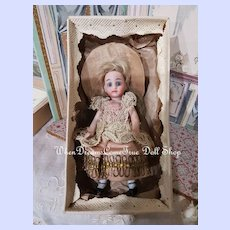 ~~~ Antique French all Bisque Mignonette in Original Costume and Box ~~~