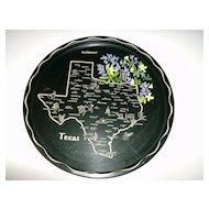 Tin State Souvenir Tray ~ Texas