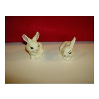Hand Painted Bunny Rabbits