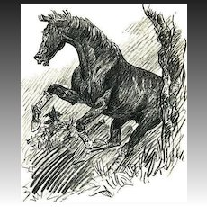 1956 'Buckle Horse', PAUL BROWN Equestrian Art, Rare 1st Ed, First Fling Racehorse, Original DJ, Out-Of-Print