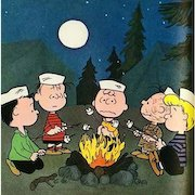 1970 'It Was A Short Summer Charlie Brown', 1st Ed, Charles M. Schultz, Television, Cartoon Characters