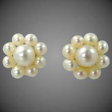 10k Gold Seed Pearl Stud Earrings