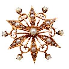 Victorian 14k Gold Starburst Seed Pearls PIn / Pendant