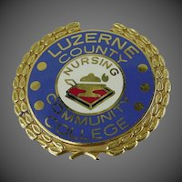 14k Solid Gold Luzerne County Community College Nursing Pin