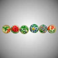 6 Antique Mother of Pearl Hand Painted Floral Buttons