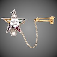 14k White and Yellow Gold Diamond Order of the Eastern Star Diamond Pin with Gavel