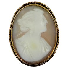 Vintage Carved Shell Cameo Pin / Pendant