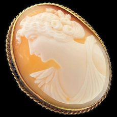 1920's Gold Filled Carved Shell Cameo Pin