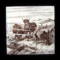 Signed Minton Tile ~ Wm Wise Farm ~ Cows 1879