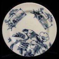 Flow Blue Aesthetic ORNITHOLOGY Plate ~ Birds 1870