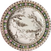 Rare Hand Colored Brown Transferware Wedgwood Plate ~ SEAWEED 1883