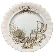 Brown Transferware Seaweed Plate ~ Crab OCEANA 1891