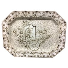 19th Century Brown Transfer English Platter ~ DEVONSHIRE 1884